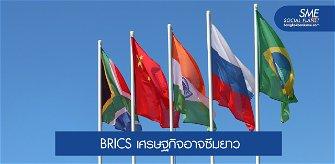 วิกฤติโควิด 19 ทุบเศรษฐกิจกลุ่ม BRICS เลื่อนยาว